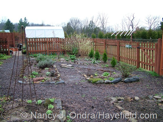 Happy Garden at Hayefield
