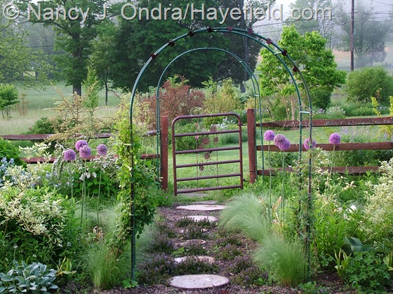 Side garden at Hayefield.com