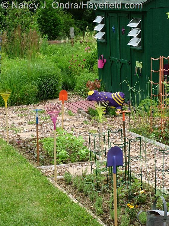 Veg garden at Hayefield.com
