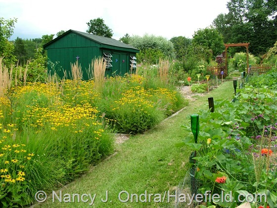 Perennial meadow and vegetable garden at Hayefield.com