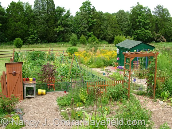 Vegetable garden and perennial meadow area at Hayefield.com