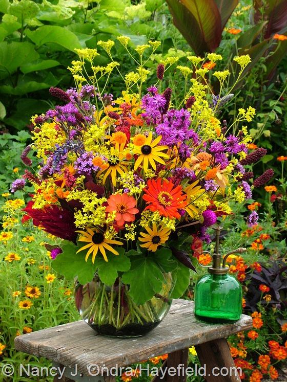 Flower arrangement with Patrinia scabiosifolia at Hayefield.com