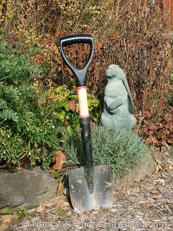 Mini D-handled shovel at Hayefield.com