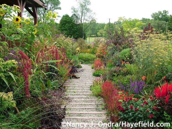 Front Walk at Hayefield.com