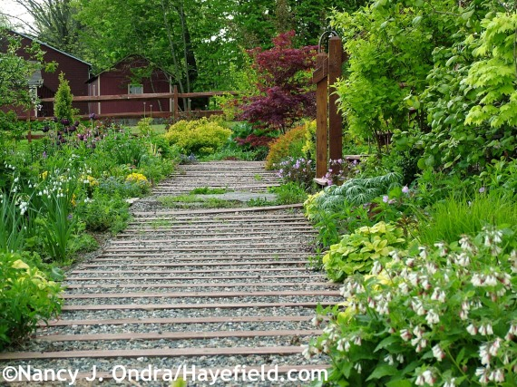 Side garden path at Hayefield.com
