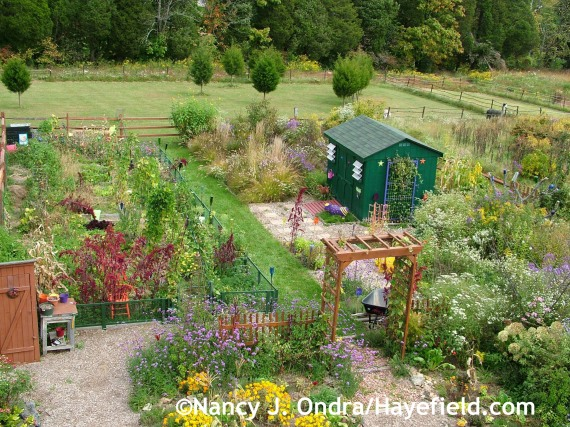 Veg garden and cottage garden at Hayefield.com