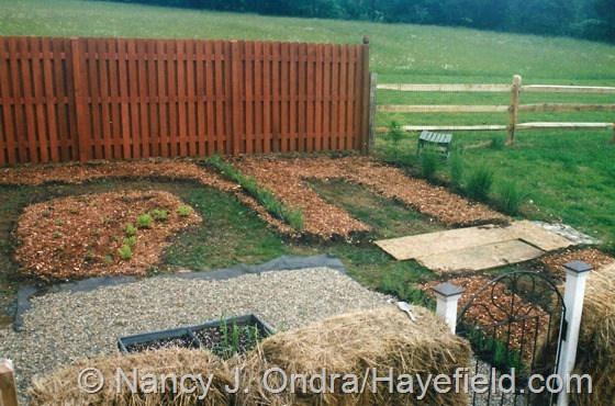 Kitchen Garden at Hayefield.com June 2002