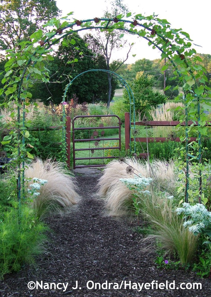 Side-garden arbors at Hayefield.com