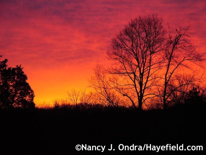 March sunrise at Hayefield.com