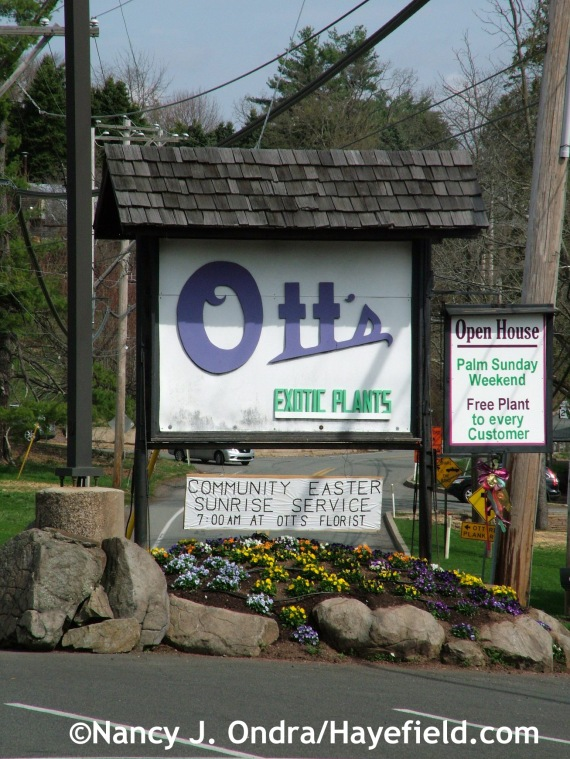 Ott's Exotic Plants in Schwenksville, PA