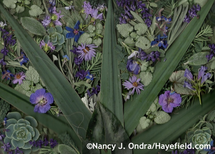 Autumn Blues and Grays at Hayefield.com