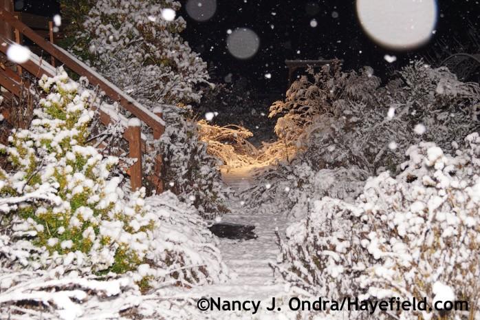 First Snow at Hayefield.com