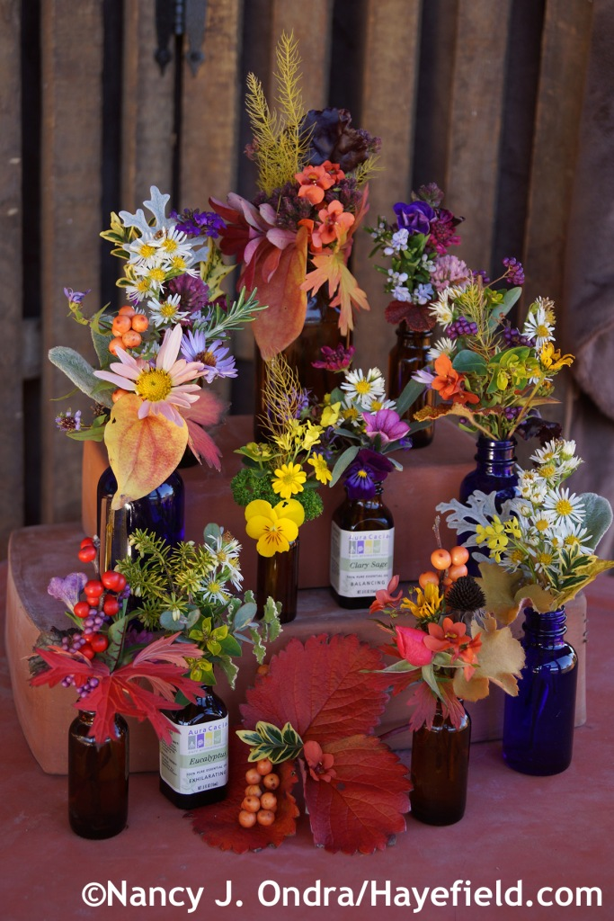 November bouquets at Hayefield.com