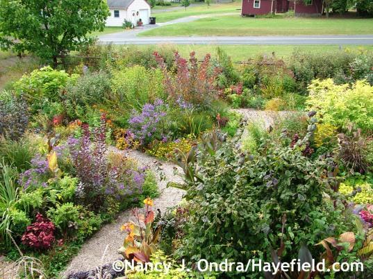 Front Garden September 2013 at Hayefield.com