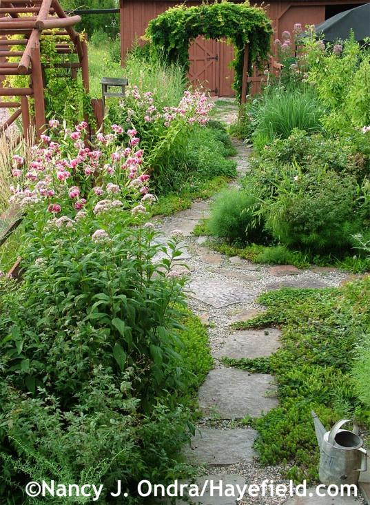 Path to barn July 2012 at Hayefield.com