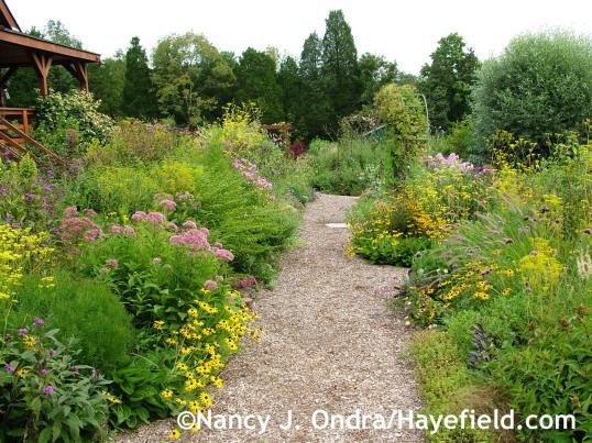 Side Garden Sept 2013 at Hayefield.com