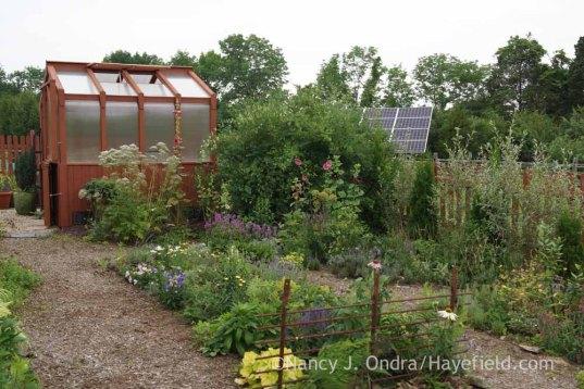 The Happy Garden at Hayefield; Nancy J. Ondra