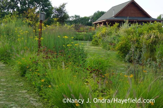 The Long Border and The Shrubbery at Hayefield; Nancy J. Ondra