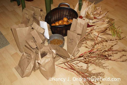 Seeds for 2015 giveaway; Nancy J. Ondra at Hayefield