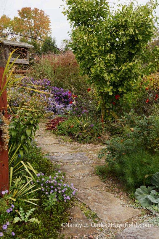 Courtyard fieldstone path; Nancy J. Ondra at Hayefield