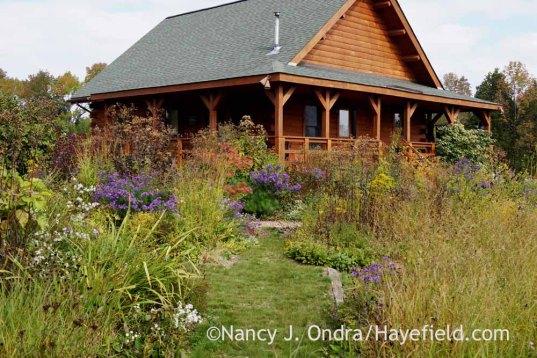 Grass path in front garden; Nancy J. Ondra at Hayefield