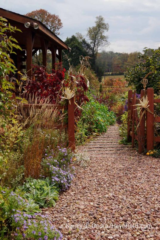 Front garden path; Nancy J. Ondra at Hayefield