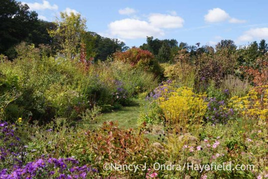 Front Garden Middle Path; Nancy J. Ondra at Hayefield