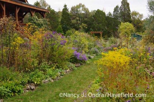Side Garden in mid-October; Nancy J. Ondra at Hayefield
