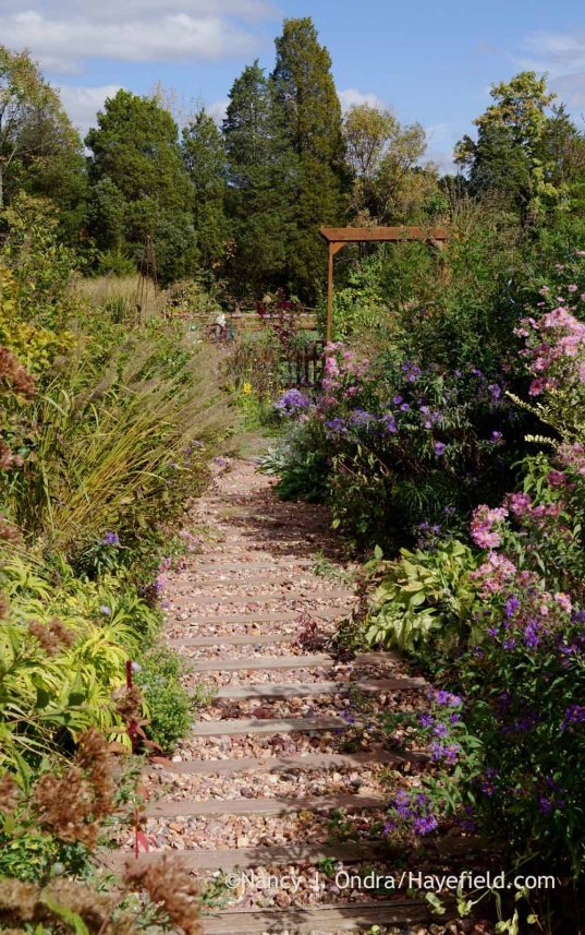 Side garden timber-and-gravel path; Nancy J. Ondra at Hayefield