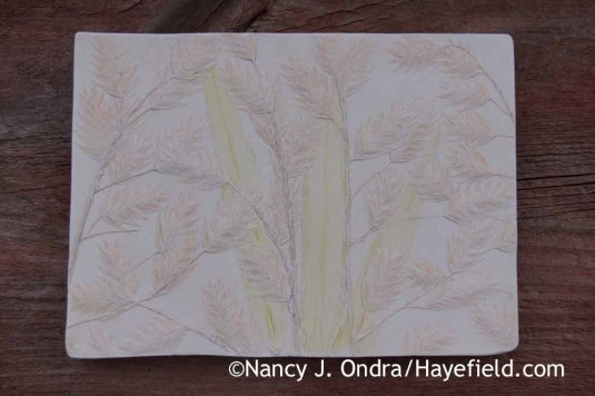Chasmanthium latifolium Tinted Paster Tile; Nancy J. Ondra at Hayefield