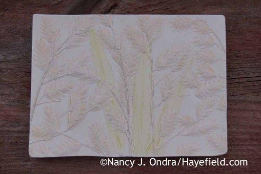 Chasmanthium latifolium Tinted Paster Tile; Nancy J. Ondra at Hayefield
