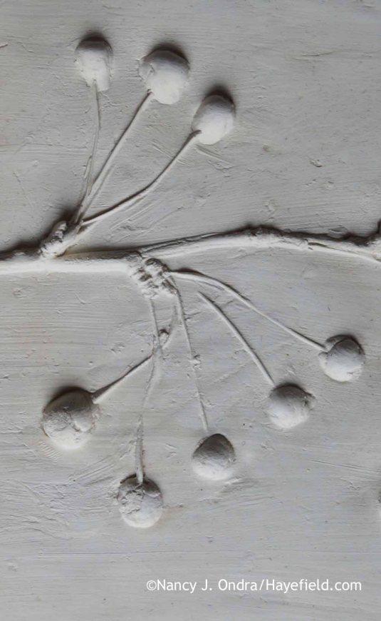 Malus (Crabapple) Plaster Tile Detail; Nancy J. Ondra at Hayefield