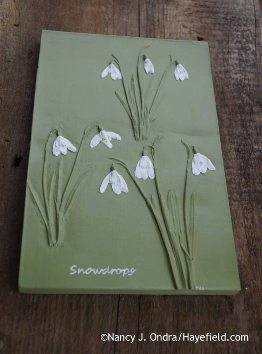 Galanthus nivalis Botanical Impression Tile; Nancy J. Ondra at Hayefield