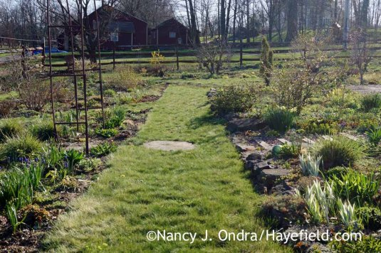 Side Garden - April 14, 2016; Nancy J. Ondra at Hayefield