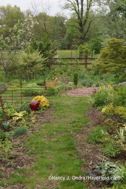 The back garden at Hayefield [Nancy J. Ondra]