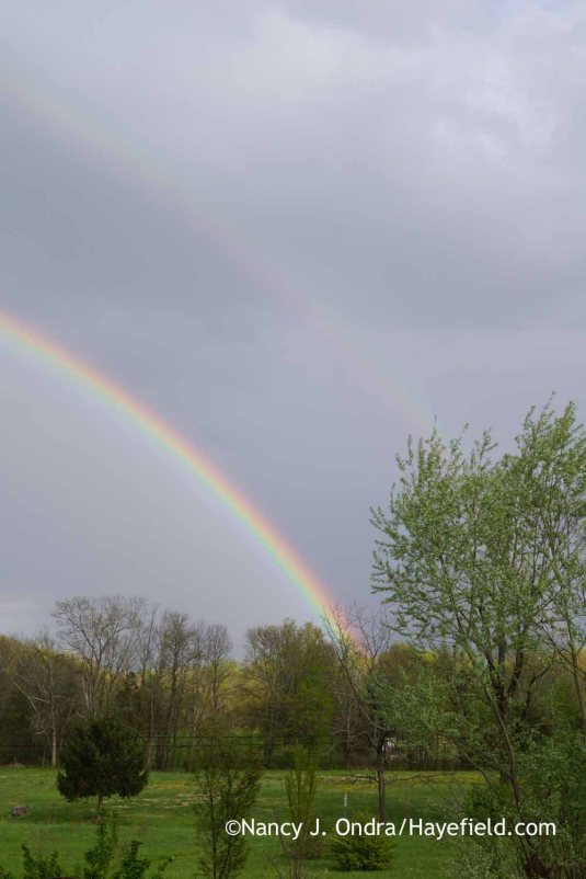 Double rainbow at Hayefield; Nancy J. Ondra