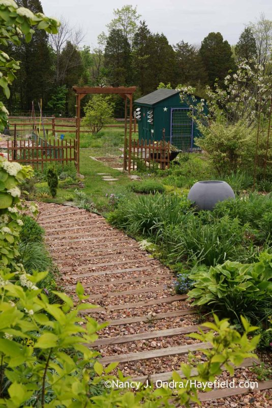 Looking from the side steps back to the veg garden and orchard area at Hayefield [Nancy J. Ondra]