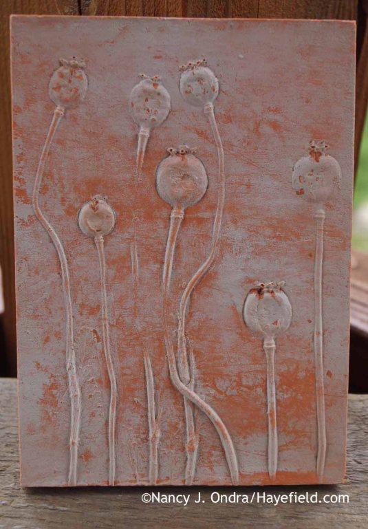 Poppy (Papaver somniferum) Botanical Casting [Nancy J. Ondra at Hayefield]