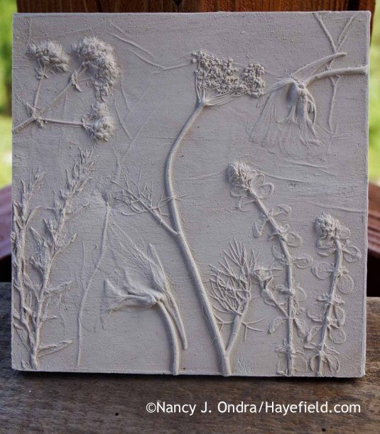 Summer herbs and edibles botanical casting [Nancy J. Ondra at Hayefield]