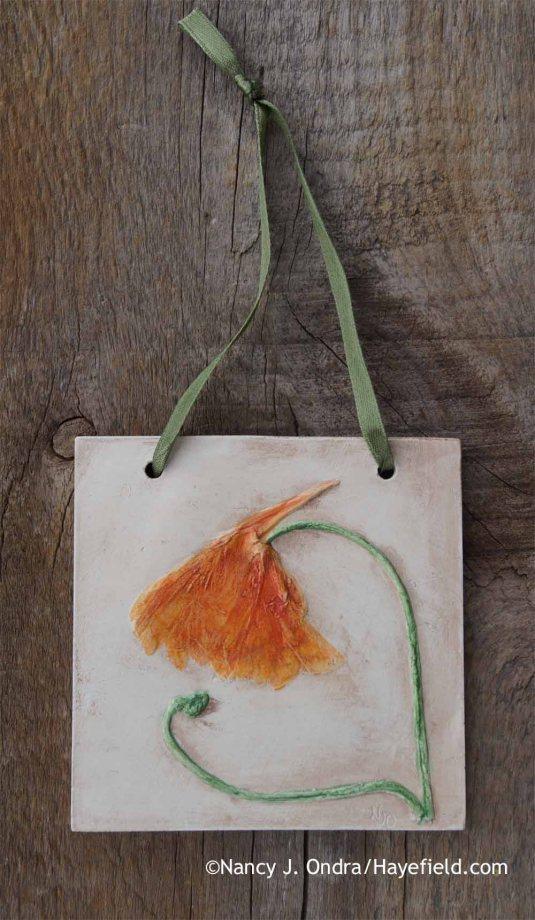 Common nasturtium (Tropaeolum majus) Botanical Casting [Nancy J. Ondra at Hayefield]