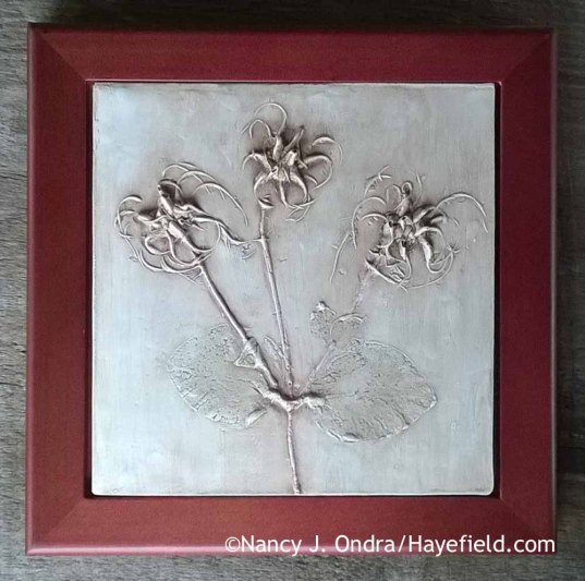 Botanical casting of Clematis glaucophylla seedheads [Nancy J. Ondra at Hayefield]