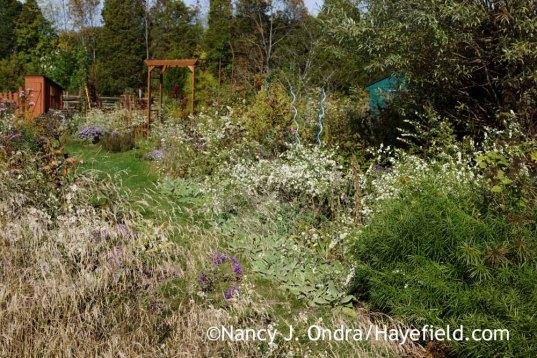 The Side Garden at Hayefield [Nancy J. Ondra]