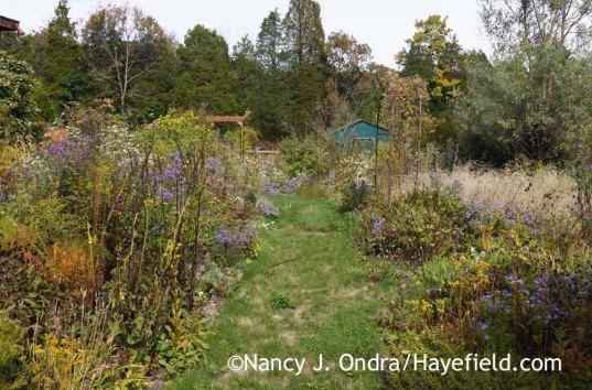 The Side Garden at Hayefield - October 9, 2016; Nancy J. Ondra
