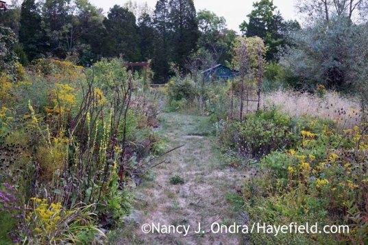 The Side Garden at Hayefield - September 18, 2016 ; Nancy J. Ondra