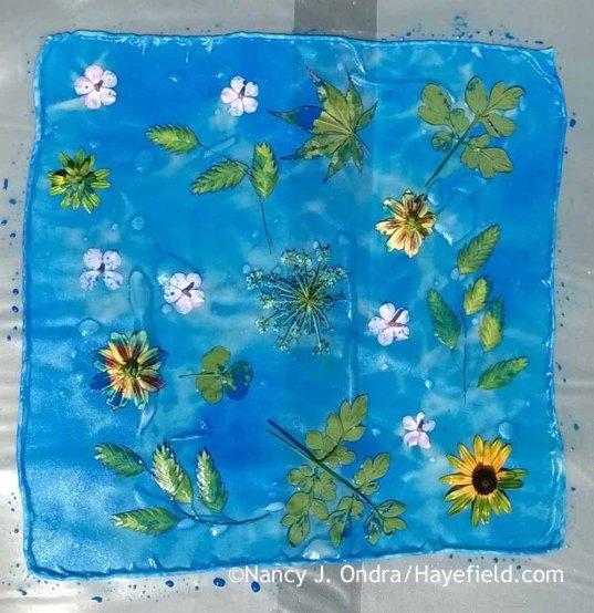 Solar printing on silk [Nancy J. Ondra at Hayefield]