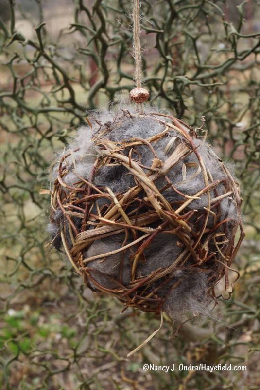 Finished vine ball with alpaca fiber for bird nesting [Nancy J. Ondra/Hayefield.com]