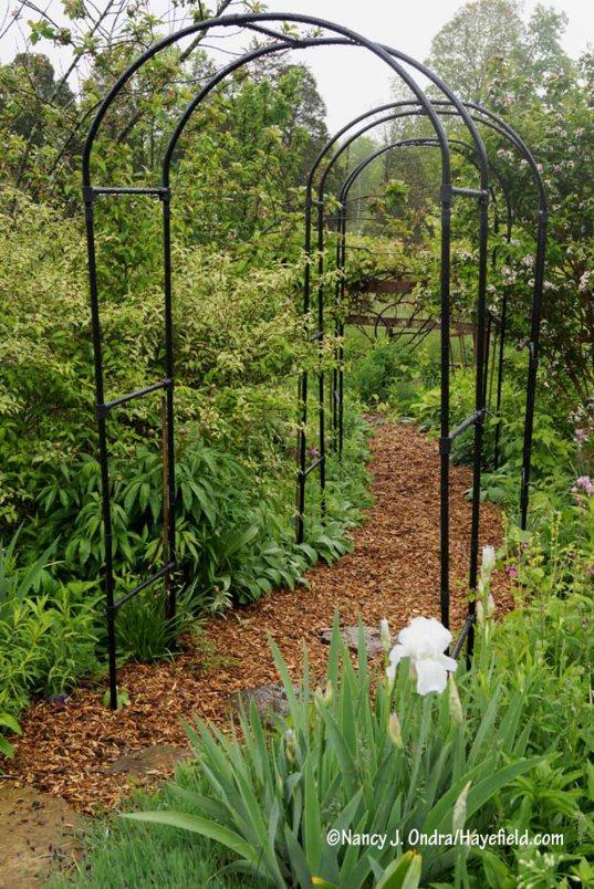 Cottage path with new arbors [Nancy J. Ondra/Hayefield.com]
