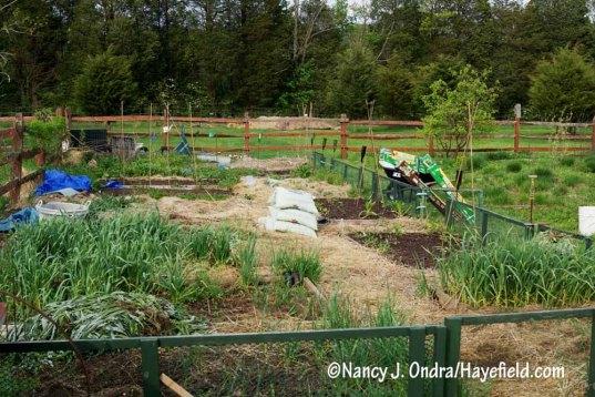 Vegetable garden at Hayefield pre-planting [Nancy J. Ondra/Hayefield.com]