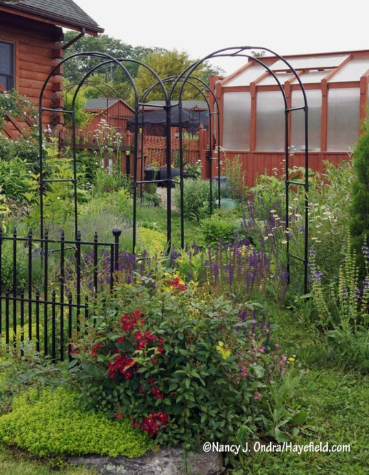 The Happy Garden [Nancy J. Ondra/Hayefield.com]