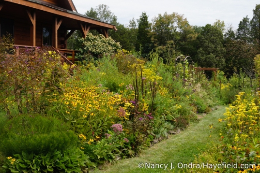The side garden at Hayefield - September 2017 [Nancy J. Ondra/Hayefield.com]